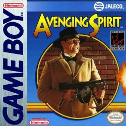 Avenging Spirit Gameboy Cover
