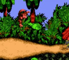Donkey Kong Country Game Boy Color Screenshot