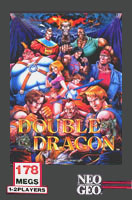Double Dragon Cover